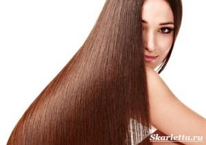 Строение-волоса-4