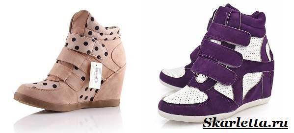 Сникерсы-обувь-2