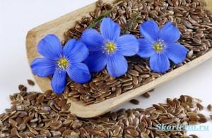 Семена-льна-польза-как-принимать-семена-льна-2
