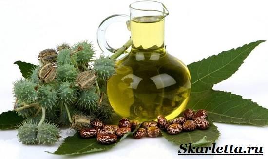 Касторовое-масло-Свойства-применение-и-противопоказания-касторового-масла-1