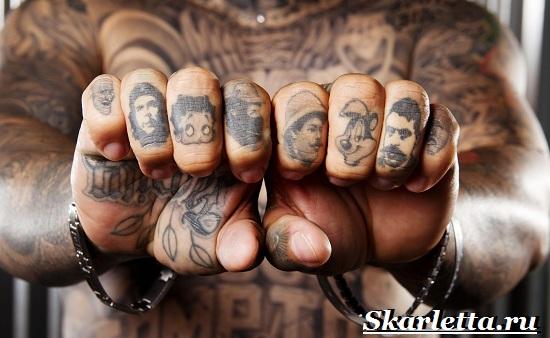 Тату-на-пальцах-Значение-тату-на-пальцах-Эскизы-и-фото-тату-на-пальцах-2
